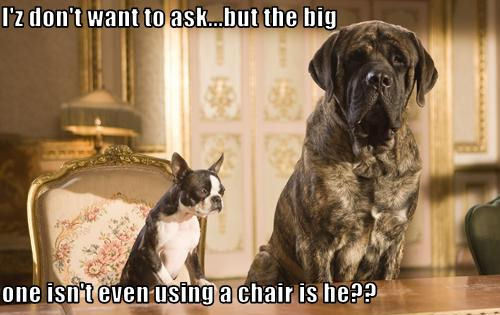 I'z don't want to ask…but the big one isn't even using a chair is he??