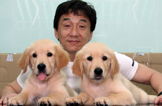 http://images2.fanpop.com/image/photos/11900000/Jackie-Chan-jackie-chan-11961109-535-350.jpg