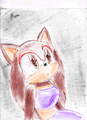 Marys Commet(colored) - mary-the-hedgehog photo