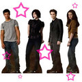 New Fashion Trend - twilight-series photo