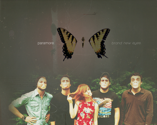 Paramore wallpaper titled Paramore wallpaper