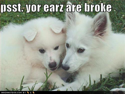 Psst..Your ears are broke !!