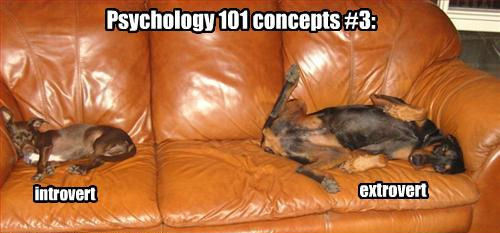 Psychology 101 concepts #3:
