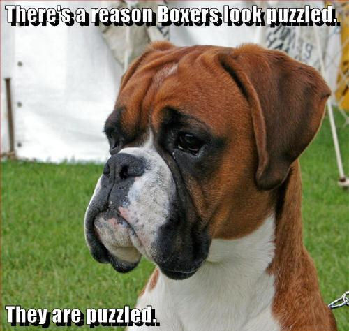Puzzled !