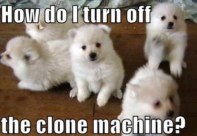 Turn off the clone machine !