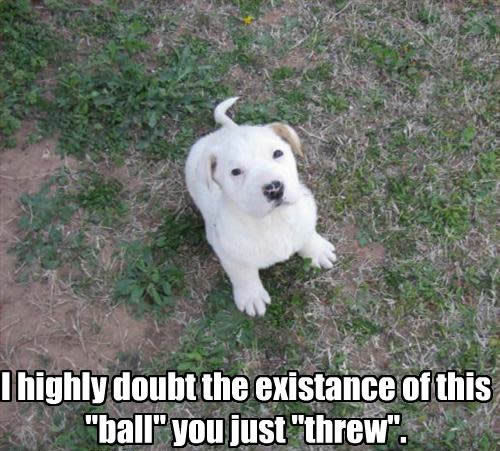 What Ball ??