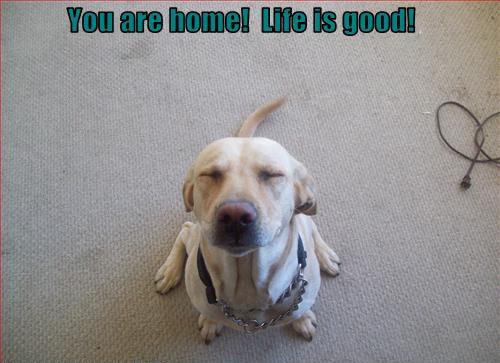 আপনি are home! Life is good!