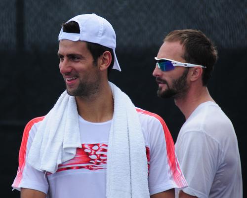 Novak Djokovic پیپر وال entitled djoko bears
