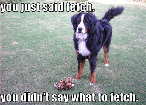 you just said fetch. you didn't say what to fetch.