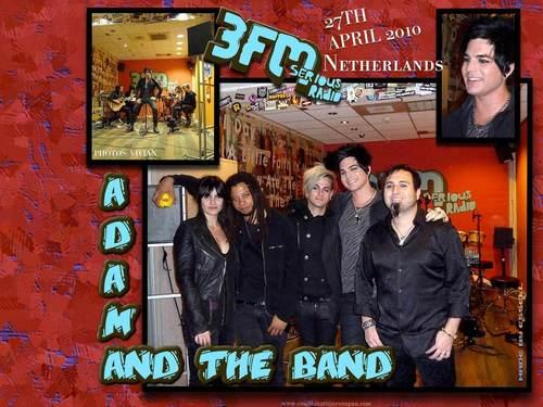 Adam Netherlands Hintergrund