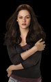 Eclipse promo - twilight-series photo