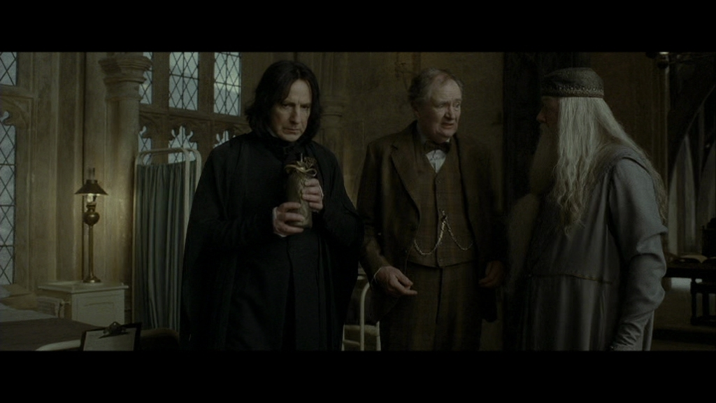 Harry Potter  Death Eaters  Characters  TV Tropes