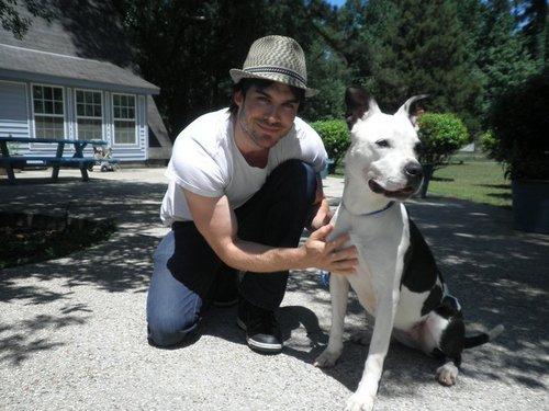 Ian Somerhalder visits the Humane Society