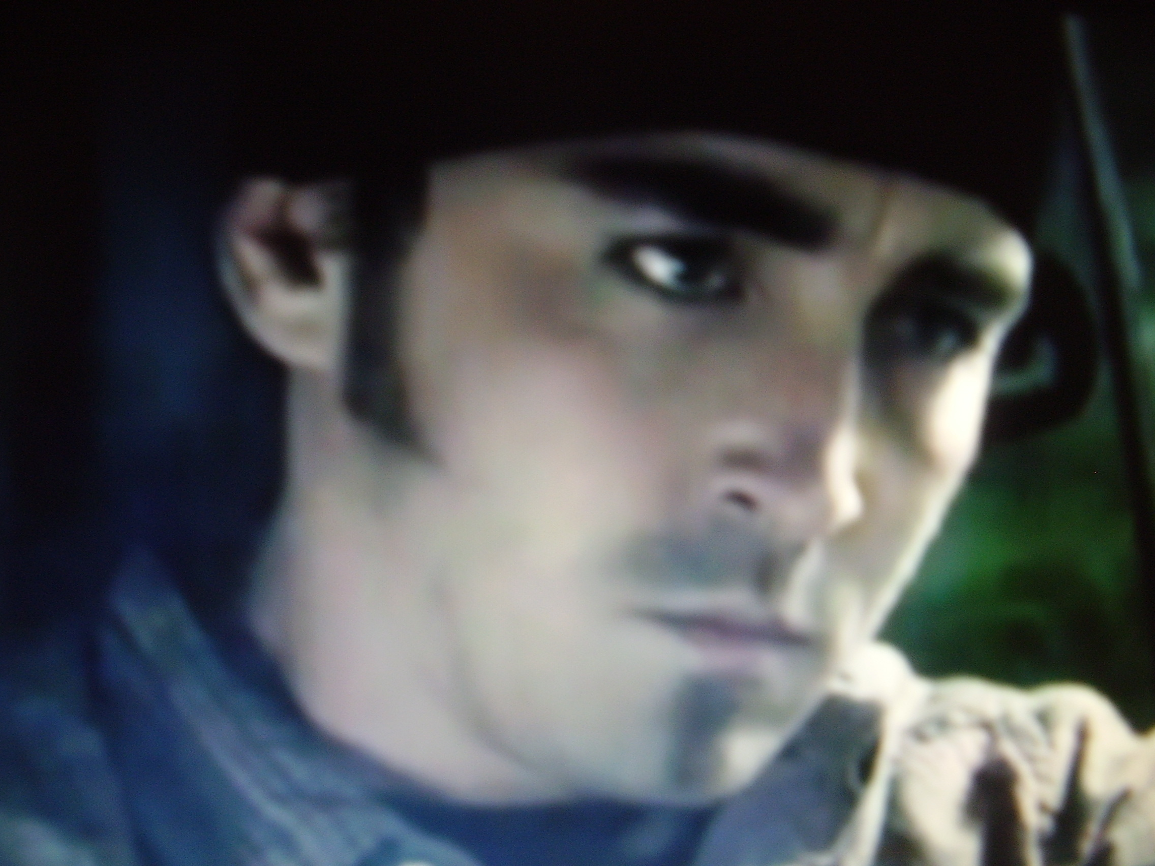 Lee Pace Posession 2009