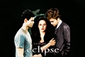 Marry Me Bella - twilight-series photo