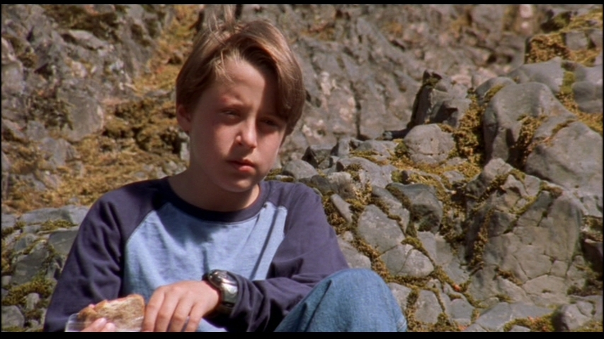 mean creek Mean creek is a 2004 american coming-of-age psychological drama film written and directed by jacob aaron estes and starring rory culkin, ryan kelley, scott mechlowicz, trevor morgan, josh peck, and carly schroeder.