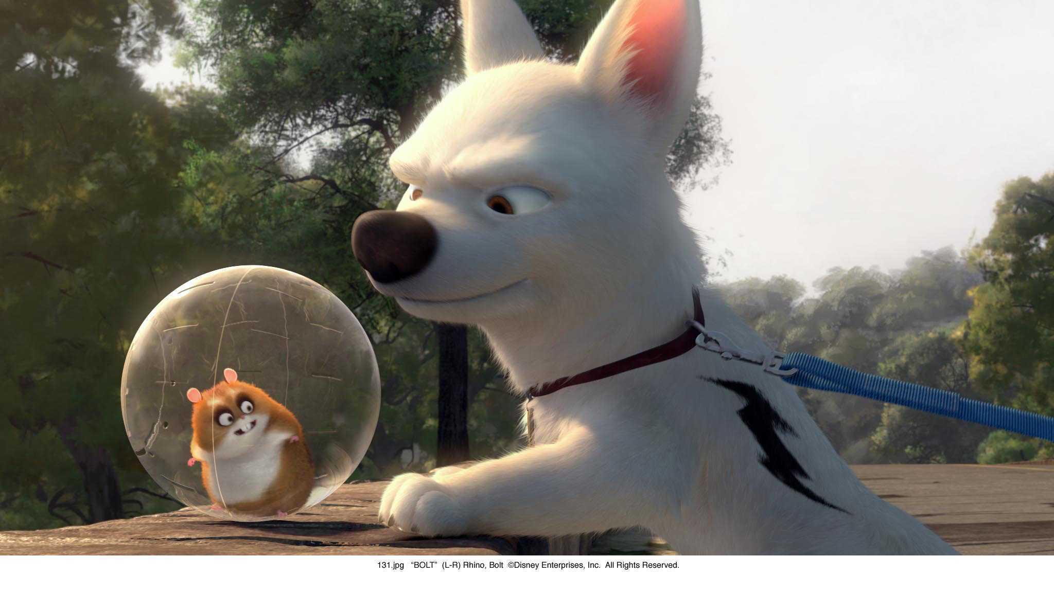 http://images2.fanpop.com/image/photos/12000000/More-Disney-Bolt-3-disneys-bolt-12089898-2048-1188.jpg