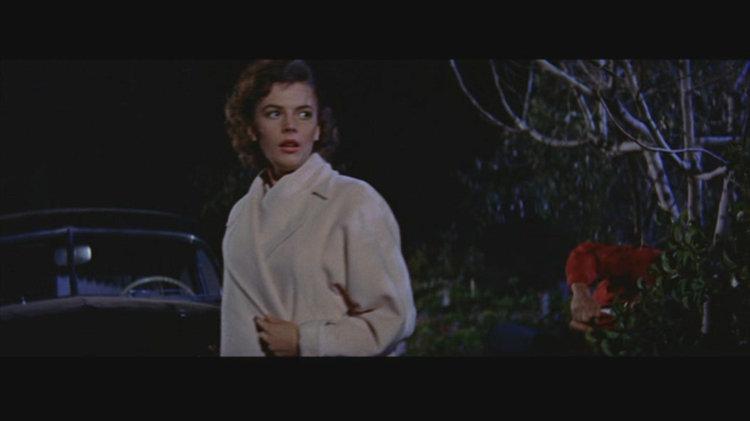 an analysis of the 1995 classic film rebel without a causes Overview of rebel without a cause, 1955, directed by nicholas ray, with james dean, natalie wood, sal mineo, at turner classic movies.