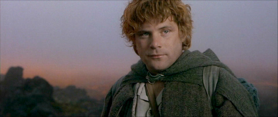 Samwise Gamgee Hobbits Lord Of The Rings