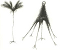Tim burton Original Drawings