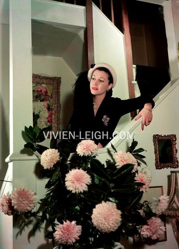 Вивьен Ли