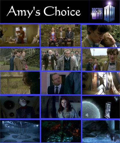 amy's choice