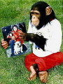michael jackson's pet - michael-jackson photo