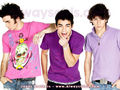 old jonas bro.(i mean the old jb) - the-jonas-brothers wallpaper