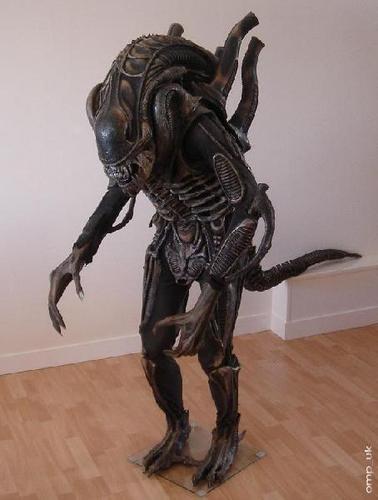 the alien from aliens