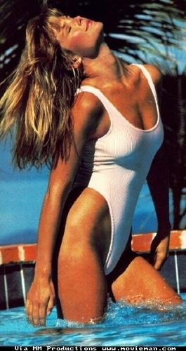 """old skool"" christie brinkley"