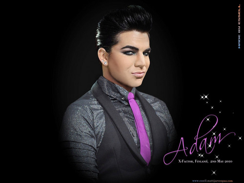 Adam Xfactor Finland Wallpaper - adam-lambert Wallpaper