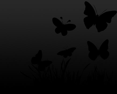 Black Butterfly Wall