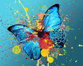 Butterfly Madness :) - yorkshire_rose wallpaper