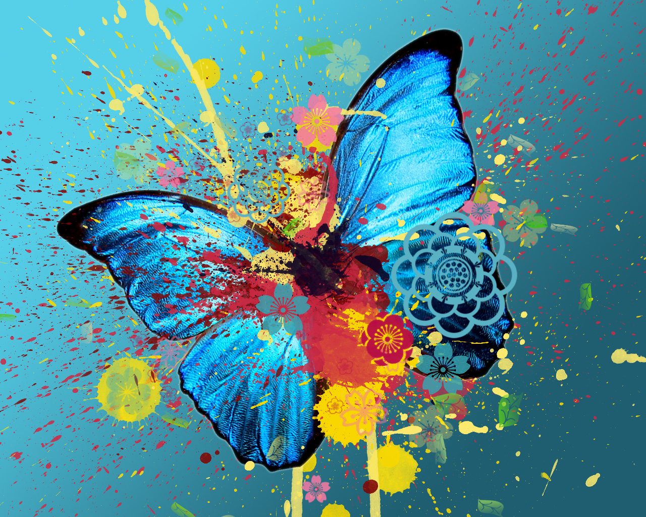 http://images2.fanpop.com/image/photos/12100000/Butterfly-Madness-yorkshire_rose-12125923-1280-1024.jpg