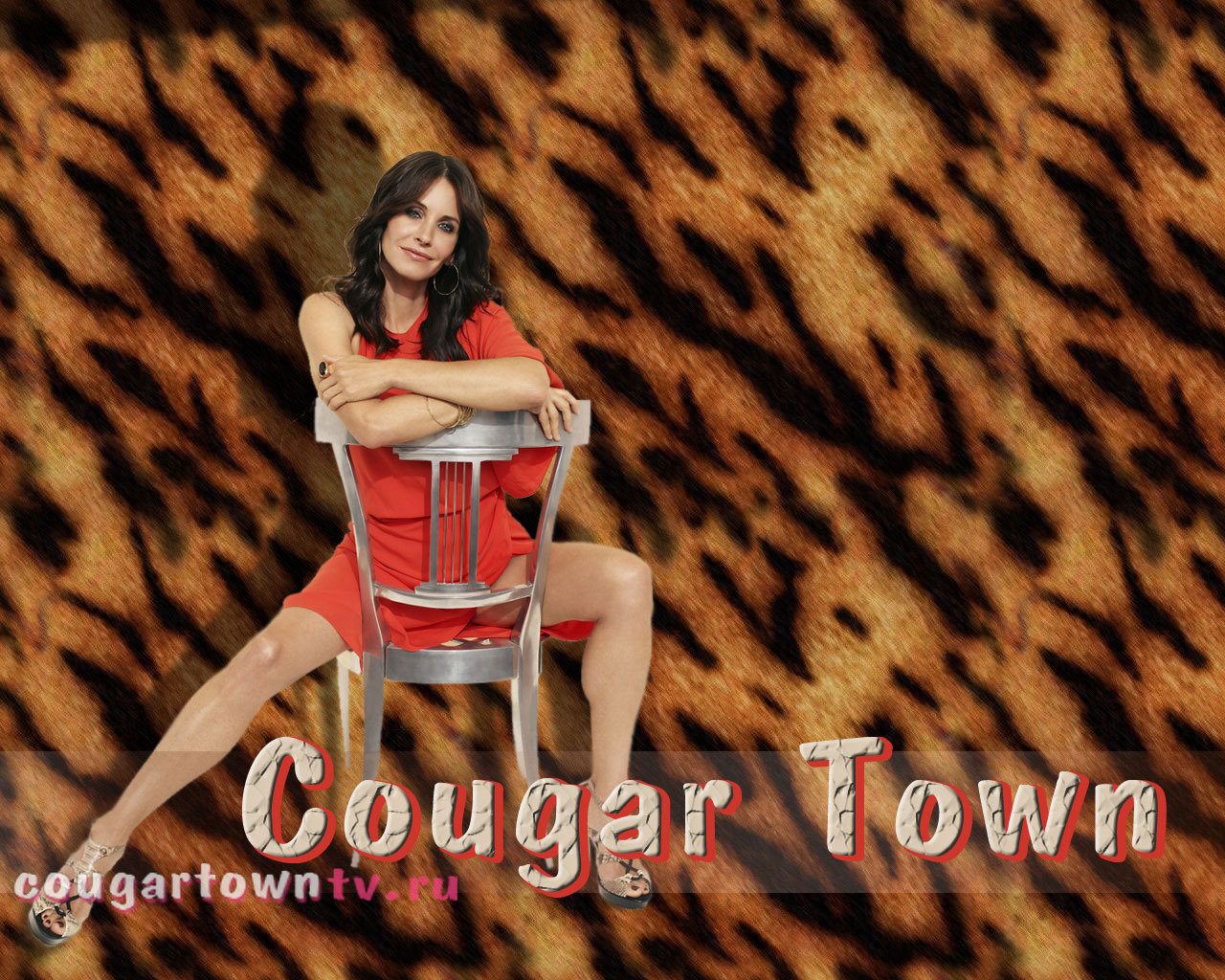 Cougar Town Wallpaper Cougar Town Wallpaper 1