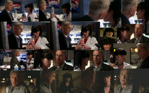 GABBY COLLAGE NCIS 7X22