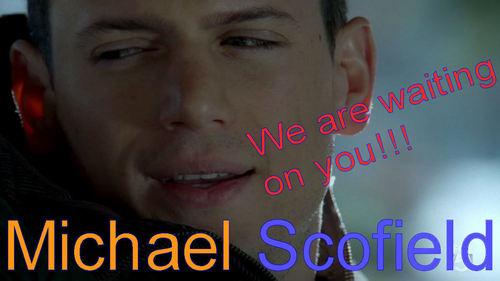 Prison Break - We want Michael to come back!!!!!!!!!!!!!