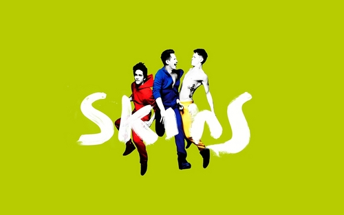 Skins - skins Wallpaper