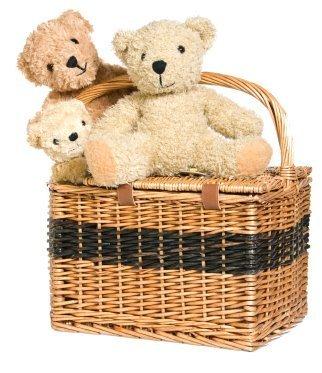 Teddybears Picnic (I'll join)