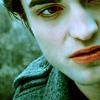 Twilight Series تصویر entitled Twilight