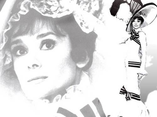 Audrey Hepburn wallpaper called Audrey Wallpapers