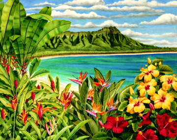 Plage  Wallpaper And Background Images In The Hawaii Club Tagged