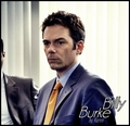Billy Burke - twilight-series photo