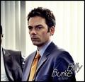 Billy Burke - twilight-series photo