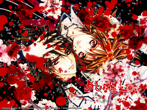 Bloody Love Wallpaper : Vampire Knight - Yuki + Kaname images Bloody Love HD wallpaper and background photos (12233775)