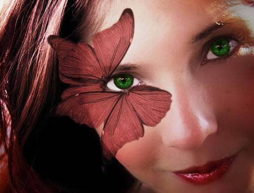 vlinder Eye