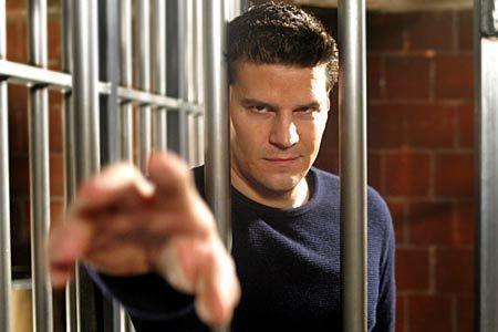 Caged Angelus