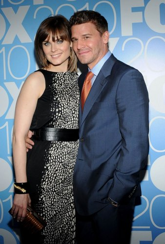 Emily Deschanel wallpaper called Emily & David at Upfronts