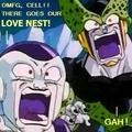 amor Nest