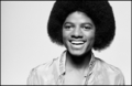 The King-The Legend - michael-jackson photo
